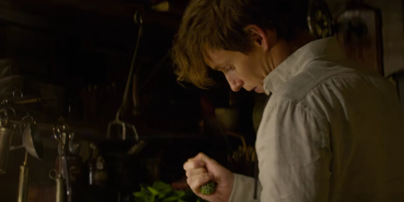 fantastic beasts and where to find them newt scamander epub
